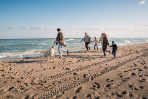 Pet-Friendly Hotel: Bring Your Furry Friends on Family Vacation